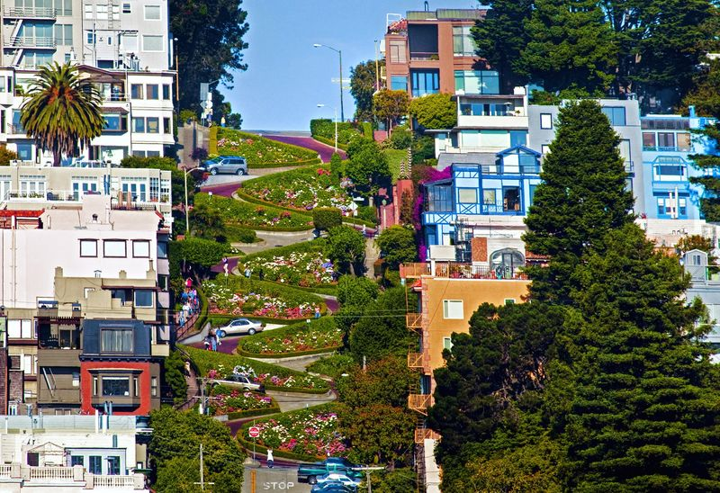 Russian Hill Patrick Lowell